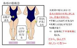 体型の特徴